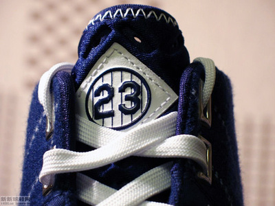 Yankeeslebron23_2